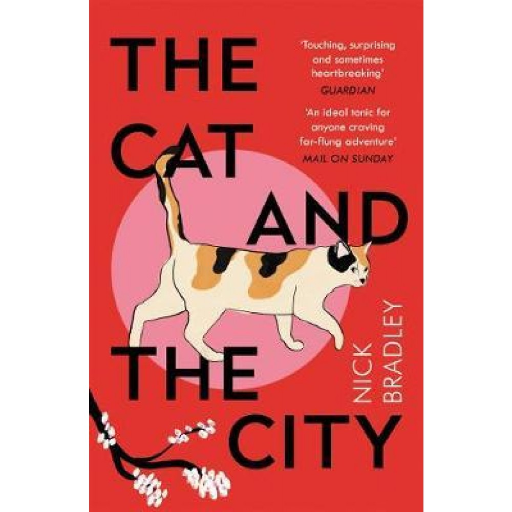 Cat & City