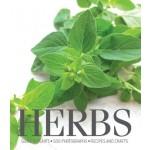 Cornerstones Series: Herbs