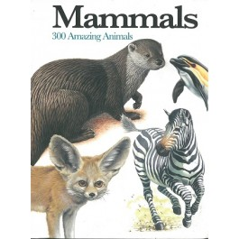 Mini Encyclopedia: Mammals