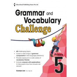 Primary 5 Grammar And Vocabulary Challenge