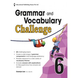 Primary 6 Grammar And Vocabulary Challenge
