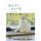 黄阿玛的后宫生活:猫咪哪有那么可爱