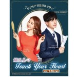 触及真心 Touch Your Heart (4DVD)
