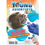 THE YOUNG SCIENTISTS LEVEL 4 ISSUE 61