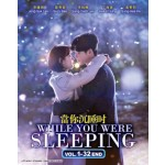 WHILE YOU WERE SLEEPING   當你沉睡時   VOL. 1 - 32 END (4DVD)