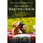 THE ART RACING IN THE RAIN (MTI)