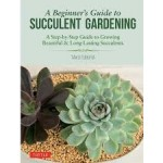 A BEGINNER'S GUIDE TO SUCCULENT GARDENIN