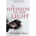 DIVISION OF LIGHT