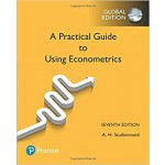 USING ECONOMETRICS GE