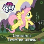 C-MY LITTLE PONY: ADVENTURE IN EVERTREE FOREST