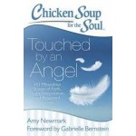 Chicken Soup for the Soul: Touched by an Angel: 101 Miraculous Stories of Faith, Divine Intervention, and Answeredprayers