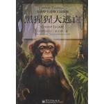 非洲野生动物王国探秘:黑猩猩大逃亡