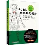 人体经筋解剖图谱:图解学习人体经筋解剖及筋结点