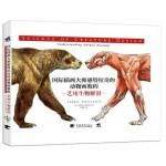 国际插画大师惠特拉奇的动物画教程:艺用生物解剖