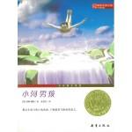 国际大奖小说(升级版):小河男孩