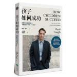 孩子如何成功:我們要如何教養孩子,才能讓孩子一生受益?(二版)