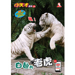 小天才24-白色的老虎