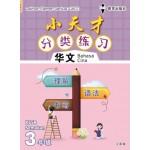 三年级小天才 分类练习华文
