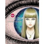 THE BEST OF JUNJI ITO