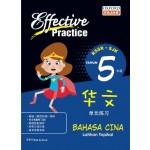 Primary 5 Effective Practice Latihan Topikal SJK Bahasa Cina