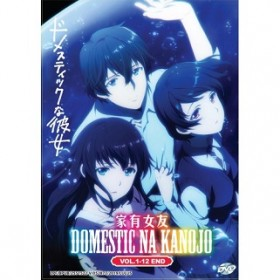 DOMESTIC NA KANOJO V1-12END (DVD)