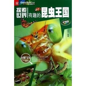 有趣的昆虫王国