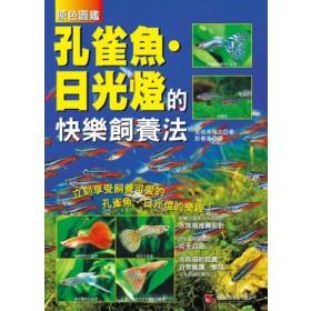 孔雀魚·日光燈的快樂飼養法