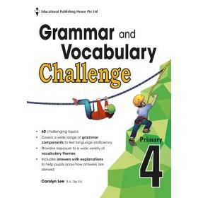 Primary 4 Grammar And Vocabulary Challenge