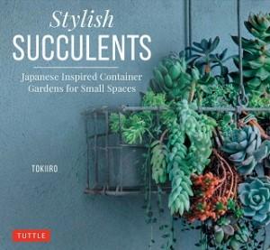 CT Stylish Succulents