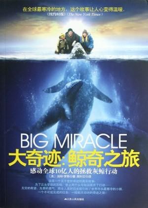 大奇迹:鲸奇之旅·感动全球10亿人的拯救灰鲸行动