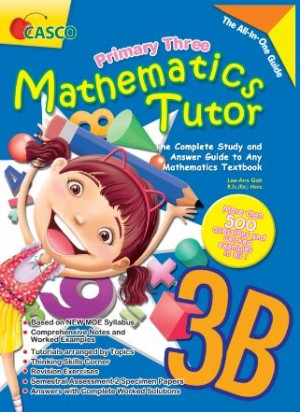 P3B Mathematics Tutor