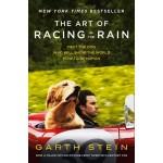 THE ART RACING IN THE RAIN (MTI)