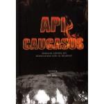 API CAUCASUS