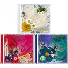 Tae Yang - White Night (3rd Album) (Random version)
