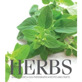 Cornerstones Series: Herbs
