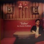 TALLER -JAMIE CULLUM (LP)