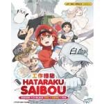 HATARAKU SAIBOU 工作細胞 SEASON 1+2 + BLACK (VOL.1-34END) + OVA (4DVD)