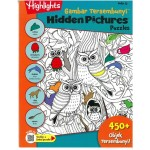 HIDDEN PICTURES PUZZLES BOOK 13 (BI-BM)