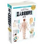 图解人体经络养生全书(全彩图解典藏版)