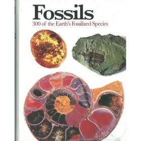 PE-MINI ENCYCLOPEDIA: FOSSILS