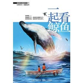 一起看鲸鱼