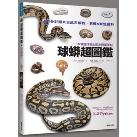 球蟒超圖鑑:一本掌握球蟒生態及觀賞要點