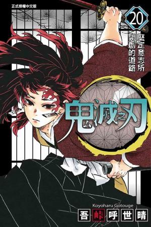 鬼滅之刃 (20)