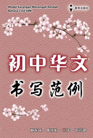 初中华文书写范例