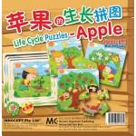 苹果的生长拼图