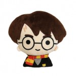 Harry Potter - Harry Potter 2D Figural Cushion