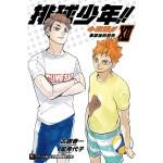 排球少年!! 小說版!! (Ⅻ):畢業後的景色