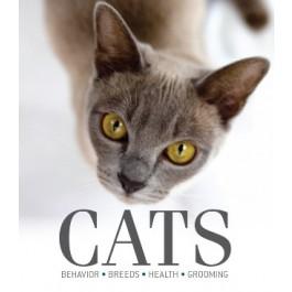 Cornerstones Series: Cats