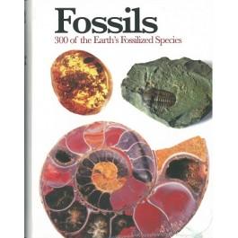 PE-MINI ENCYCLOPEDIA: FOSSILS