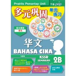 二年级 B 多元巩固单元练习 华文